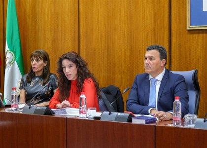 """PSOE-A urge a la consejera de Igualdad a plantarse ante el """"pacto de la testosterona contra las mujeres"""""""