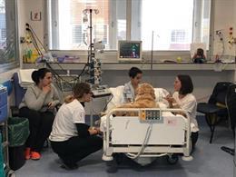 La interacción con perros puede reducir los niveles de dolor, ansiedad y miedo de los pacientes pediátricos críticos