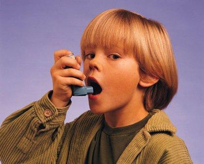Más del 80% de los casos de asma infantil son de tipo alérgico