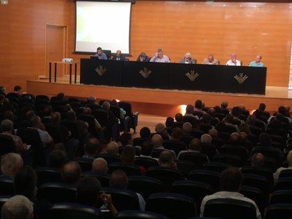 Cooperativas oleícolas muestran su unidad a la hora de lograr medidas de autorregulación del sector