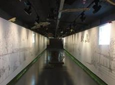 TMB converteix l'estació de Metro de Diagonal en un 'Jardí Xinès' (CASA ÀSIA)