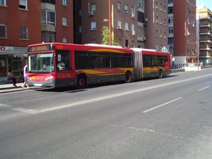"""Conductores de Tussam avisan que persiste el """"aparcamiento indiscriminado"""" de buses turísticos en sus paradas"""