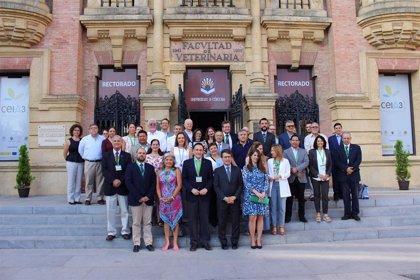 Córdoba acoge el IX Encuentro de la Red Innovagro