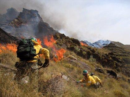 Estabilizado el incendio forestal declarado en un paraje de Benalmádena (Málaga)