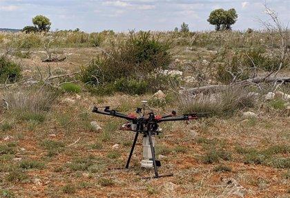Semillas inteligentes y un dron reforestan el Parque Natural del Alto Tajo con 1,5 millones de árboles autóctonos