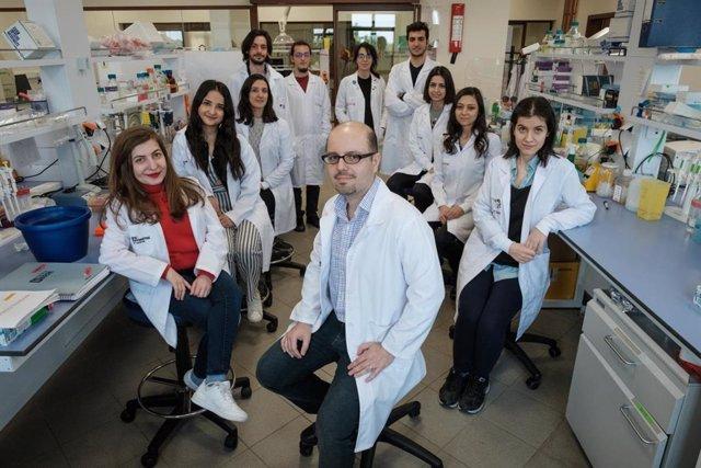 Investigadores logran mejorar el método de 'reprogramación celular' desarrollado por el Premio Nobel Shinya Yamanaka