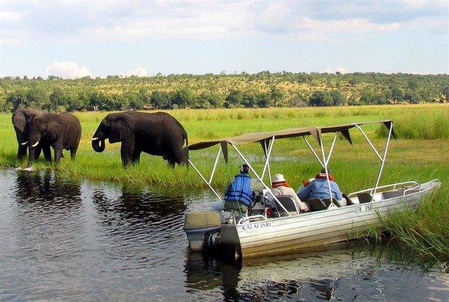 Namibia.- Namibia subastará un millas de animales salvajes ante la sequía en sus parques nacionales