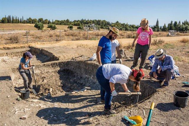 Sevilla.- Comienza la intervención arqueológica de un sector desconocido de las Termas Mayores de Itálica