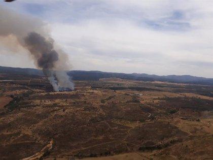 Declarado un incendio forestal en Cortegana (Huelva)