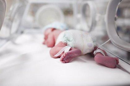 Identifican la mutación en un gen involucrado en los partos prematuros