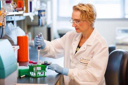"""La industria farmacéutica defiende que la medicina de precisión """"no pone en riesgo el futuro del sistema sanitario"""""""