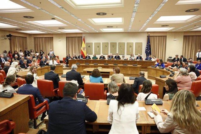 Acto de acatamiento a la Constitución de los Diputados electos al Parlamento Europeo