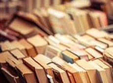 La Diputació de Barcelona instal·larà 28 bibliopiscines i una biblioplatja aquest estiu (COMUNIDAD DE MADRID)