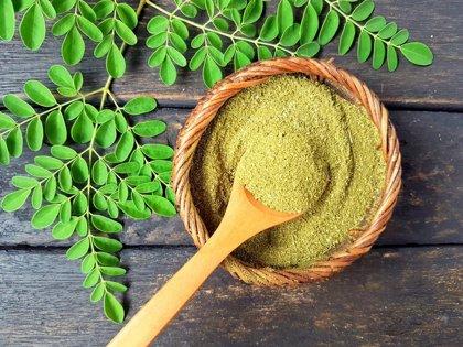 Contiene aminoácidos esenciales y alto valor nutricional, ¿qué es la moringa?
