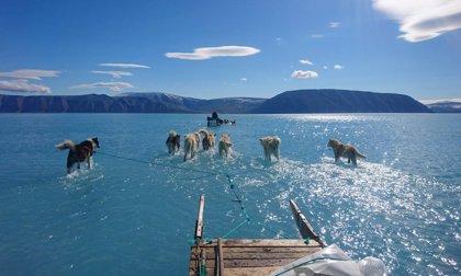 Una fotografía muestra cómo el hielo marino se derrite en Groenlandia