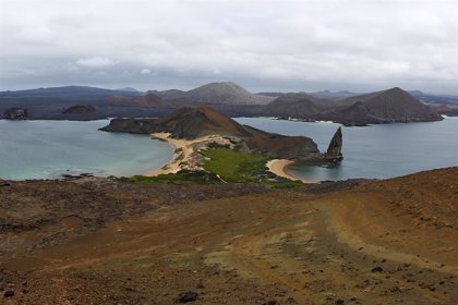 La polémica ampliación del aeropuerto de las islas Galápagos, ¿qué ocurre entre Ecuador y Estados Unidos?