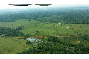 El cambio climático impactó en las comunidades amazónicas antes de la llegada de europeos