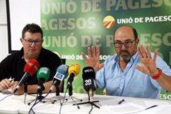 Unió de Pagesos preveu un increment del 30% de la necessitat de mà d'obra per a la campanya de la fruita (ACN)