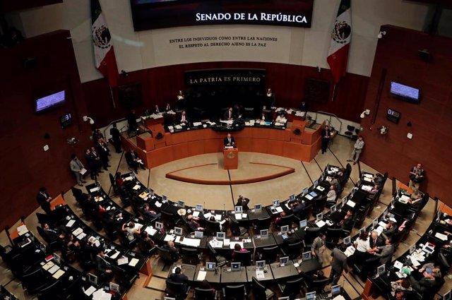 México.- Estalla un libro bomba en el despacho de una senadora mexicana