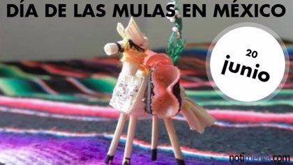 ¿Por qué el Día de las Mulas se celebra en México el jueves del Corpus Christi?