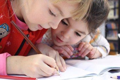 El cerebro consume la mitad de la energía de un niño