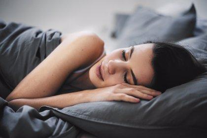 El cerebro controla el sueño REM para regular la temperatura del cuerpo