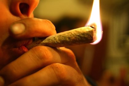 El consumo de cannabis en edades precoces altera los circuitos cerebrales de la conducta y decisiones