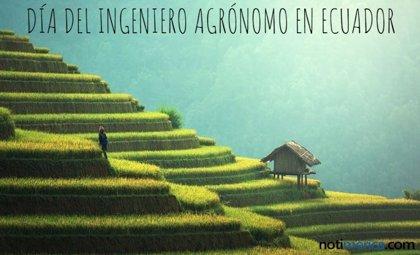 21 de junio: Día del Ingeniero Agrónomo en Ecuador, ¿qué se celebra durante esta jornada?