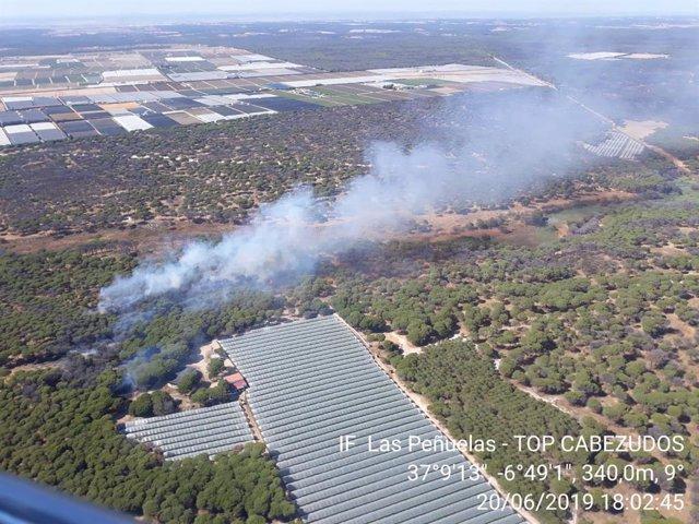 Huelva.- Sucesos.- Estabilizado un incendio forestal en el paraje de Las Peñuelas, en Moguer