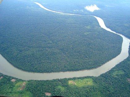 Cinco desaparecidos por el naufragio de un barco en el estado brasileño de Amazonas