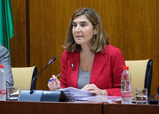 La consejera de Empleo, Rocío Blanco, en comisión parlamentaria, en una foto de archivo.