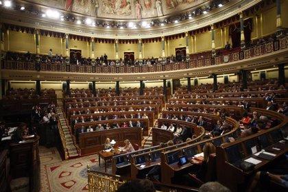 Las grandes asociaciones de víctimas del terrorismo acudirán al homenaje anual del Congreso, del que se descuelga Covite