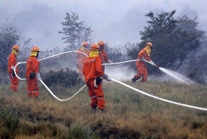 Activan el estado de emergencia química en Chile tras un incendio en una planta de azufre que ha dejado 111 afectados