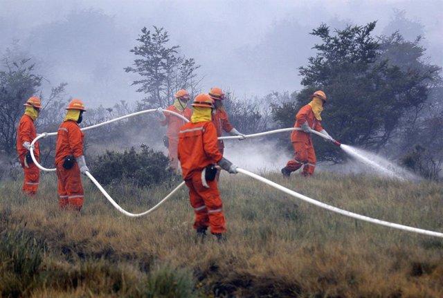 Bomberos trabajan en Chile en el incendio del Parque Nacional Torres del Paine