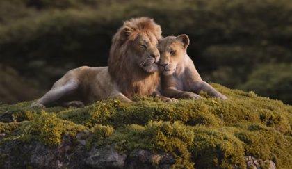 Simba y Nala sienten el amor en el nuevo clip de El Rey León, que adelanta su fecha de estreno