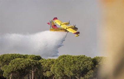 """WWF a los dos años del incendio de Doñana: """"Queda el mayor reto, aplicar el plan de restauración"""""""