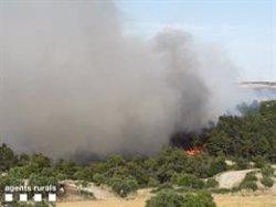 Un incendi crema deu hectàrees de vegetació agrícola i forestal entre Nalec i Rocafort (ACN)