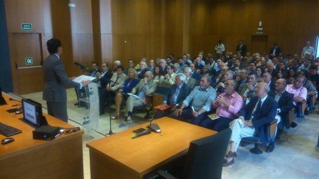 """Sevilla.- Patronal, sindicatos, colegios profesionales y asociaciones se unen en demanda de los proyectos """"estratégicos"""""""