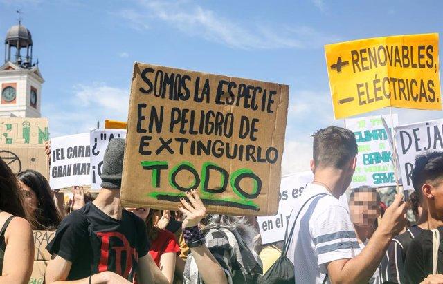 El movimiento estudiantil 'Fridays For Future' cambia de estrategia y se reunirá