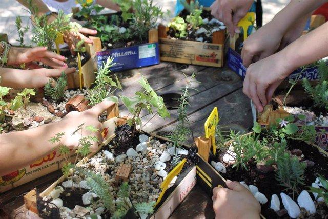 Actividades del programa 'Primavera en el Aula' que se desarrolla en la localidad de Pozuelo de Alarcón.