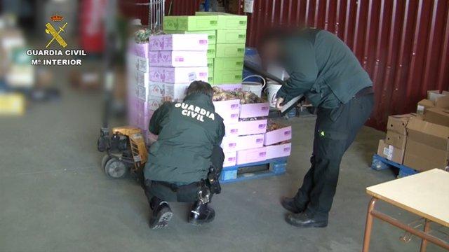 Requisadas 300 toneladas de alimentos y 39.000 libros de bebidas