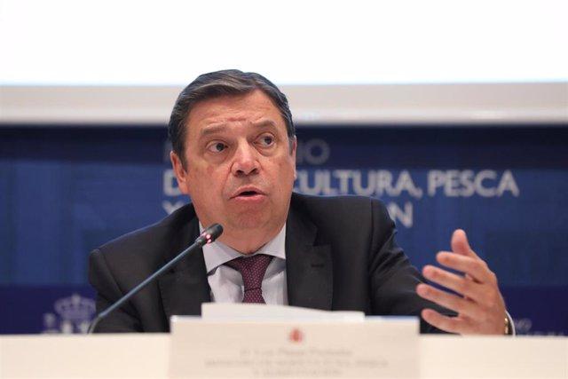 El ministro de Agricultura, Pesca y Alimentación en funciones, Luis Planas