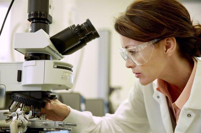 Desarrollan un método estandarizado para predecir el rechazo a un trasplante de islotes