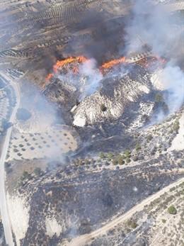 Granada.- Sucesos.- Declarado un incendio en una ladera de monte en Cortes de Baza