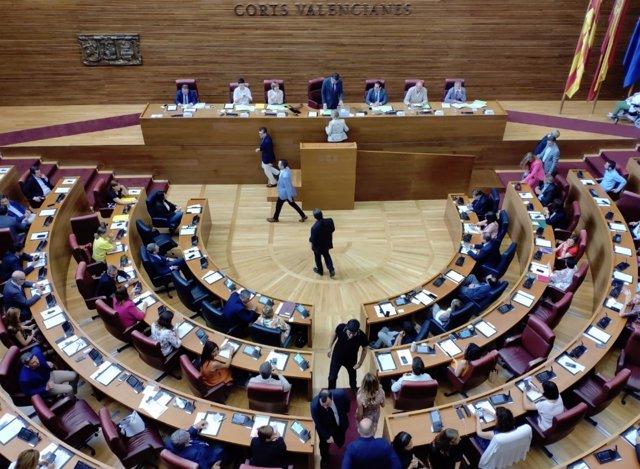 PLENO DESIGNACIÓN DE SENADORES TERRITORIALES DE LA COMUNITAT VALENCIANA