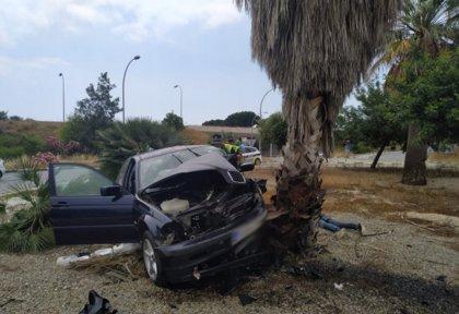 Un conductor sin permiso ni seguro se salta un control policial y acaba chocando contra una palmera en València