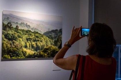 El Instituto Cervantes de Nueva York acoge desde este miércoles una exposición sobre el Camino de Santiago