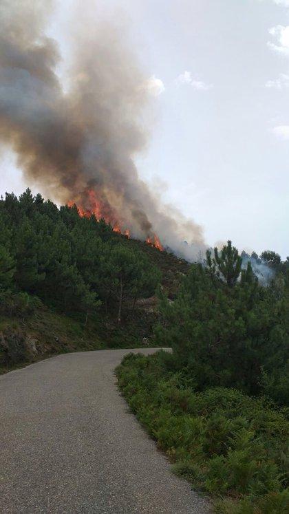 Seguridad advierte del riesgo de incendios forestales en zonas del interior de Euskadi