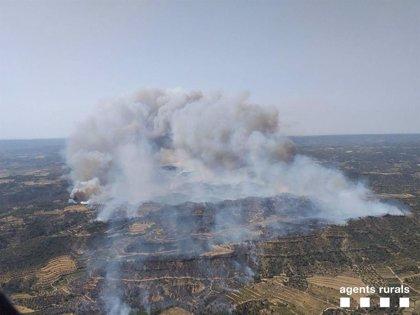Evacuan masías por el fuego en Torre de l'Espanyol (Tarragona) que afecta 500 hectáreas