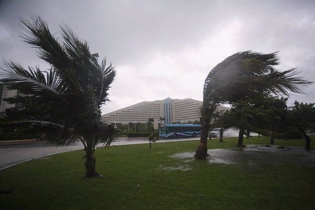 Palm trees sways as the wind blows in the hotel zone in Cancun